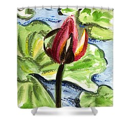 Shower Curtain featuring the painting A Birth Of A Life by Harsh Malik