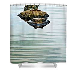 A Bit Of Curiosity Shower Curtain by Christopher Holmes