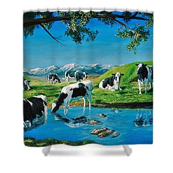 A Black And White Field Shower Curtain
