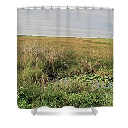 A Blue Heron Among The Glades Shower Curtain