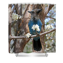 A Bouquet For You Shower Curtain by Donna Kennedy
