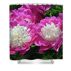A Bouquet Of Peonies Shower Curtain by Eva Kaufman