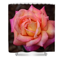 Shower Curtain featuring the photograph A Breath From Sarasota by Michiale Schneider