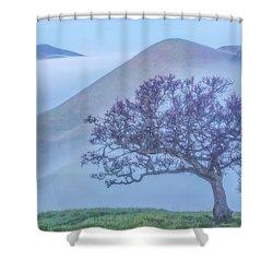 A Brief Break Shower Curtain by Marc Crumpler