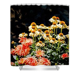 Shower Curtain featuring the photograph A Bright Flower Patch by AJ  Schibig