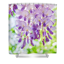 A Bright Sunshiny Day  Shower Curtain