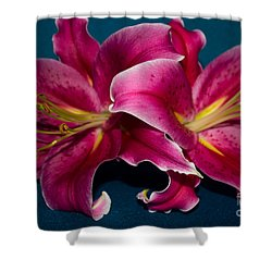 A Bunch Of Beauty Shower Curtain by Roberta Byram