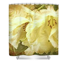 Shower Curtain featuring the photograph A Bunch Of Birthday Wishes by Jean OKeeffe Macro Abundance Art