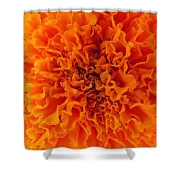 A Burst Of Orange Shower Curtain