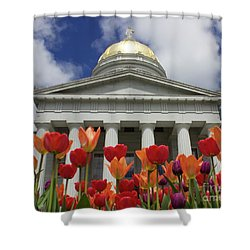 A Capitol Day Shower Curtain