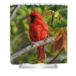 A Cardinal Named Carl Shower Curtain