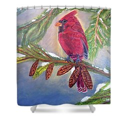 Shower Curtain featuring the painting A Cardinal's Sweet And Savory Song Of Winter Thawing Painting by Kimberlee Baxter