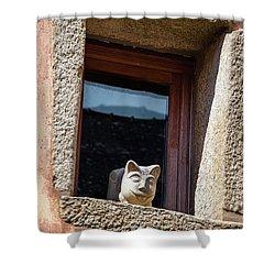 A Cat On Hot Bricks Shower Curtain