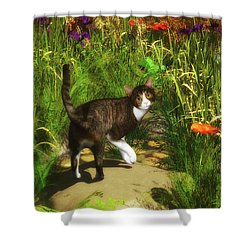 A Cat Turns Around Shower Curtain