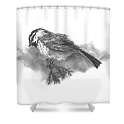 A Chickadee Named Didi Shower Curtain by Dawn Senior-Trask