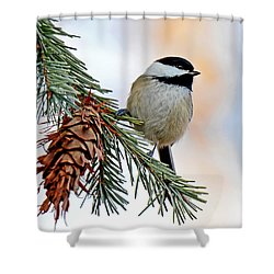 Shower Curtain featuring the photograph A Christmas Chickadee by Rodney Campbell