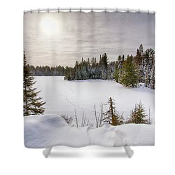 A Cold Algonquin Winters Days  Shower Curtain