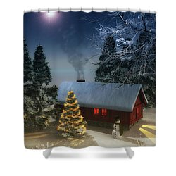 A Cold Winter Shower Curtain