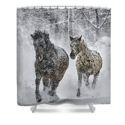 A Cold Winter's Run Shower Curtain by Wade Aiken