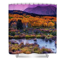 Shower Curtain featuring the photograph A Colorado Fall Along Kebler Pass by John De Bord
