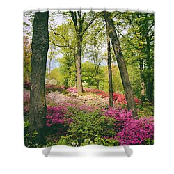 A Colorful Hillside Shower Curtain by Jessica Jenney