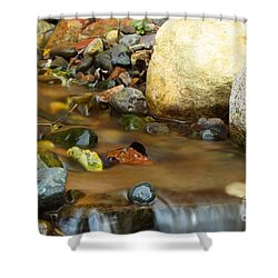 A Colorful Stream Shower Curtain