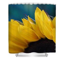 A Cool Sunflower Shower Curtain