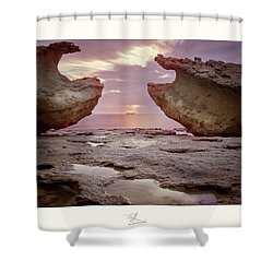 A Crab Stone, By The Cosmic Joker Shower Curtain