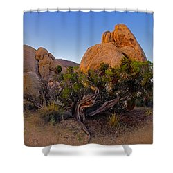 A Crazy Juniper Shower Curtain