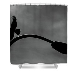 A Crow And A Streetlight Shower Curtain