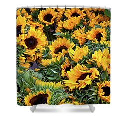 Shower Curtain featuring the photograph A Crowd Of Sunflowers by Susan Cole Kelly