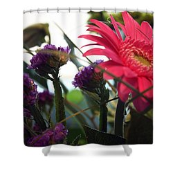 A Daisy And Friends Shower Curtain