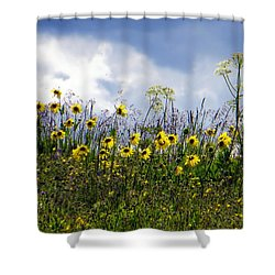 A Daisy Day Shower Curtain by Karen Shackles