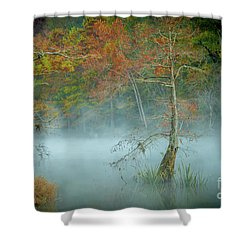 A Dancing Cypress Shower Curtain by Iris Greenwell