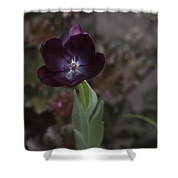A Dark Richness Shower Curtain by Morris  McClung