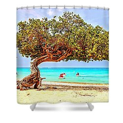 Shower Curtain featuring the photograph A Day At Eagle Beach by DJ Florek