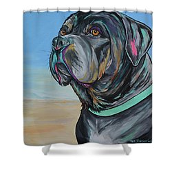 A Day At The Beach With Max Shower Curtain
