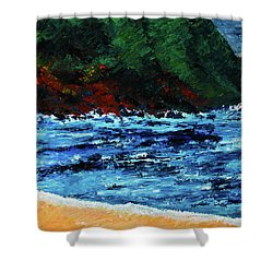 A Day At The Lake In Austin Texas Shower Curtain