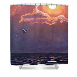 A Day In Galveston Shower Curtain by Suzanne Theis