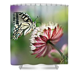A Delicate Touch Shower Curtain