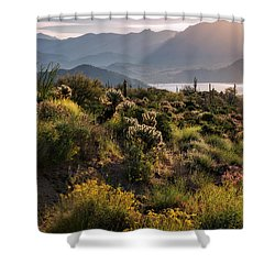 Shower Curtain featuring the photograph A Desert Spring Morning  by Saija Lehtonen