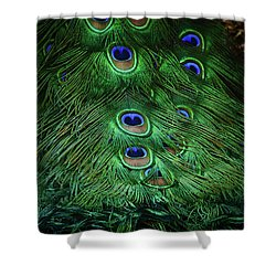 A Different Point Of View Shower Curtain by Elaine Malott