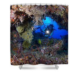 A Diver Peers Through A Coral Encrusted Shower Curtain by Steve Jones