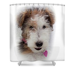 Shower Curtain featuring the photograph A Dog Named Butterfly by Karen Wiles