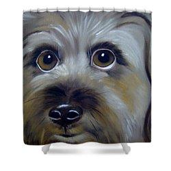 A Dog's Love Shower Curtain