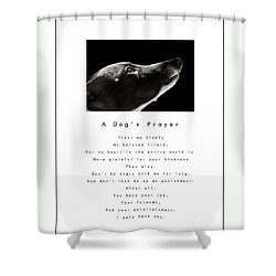 A Dog's Prayer - White Shower Curtain by Angela Rath