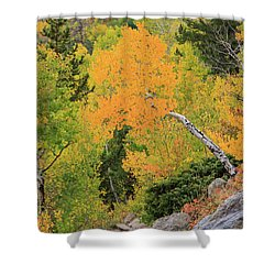 Yellow Drop Shower Curtain by David Chandler