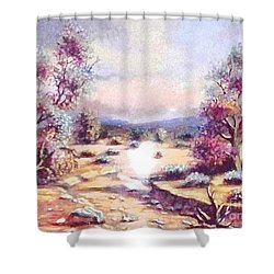 A Door Of Hope  Shower Curtain