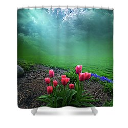 A Dream For You Shower Curtain by Phil Koch