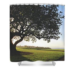 Shower Curtain featuring the photograph A Dreamy Dream by Laurie Search
